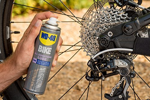 WD-40 Bike Kettenspray Allwetter 250 ml, transparent, 49703 - 2