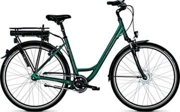 HANERIDE E-Bike Akku 36V 11.6Ah Ersatzakku Elektrische Fahrrad-Lithium Batterie Ansmann - 7